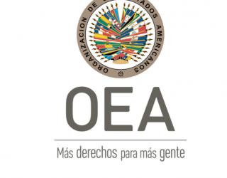 #BoliviaElectoral: Auditoría